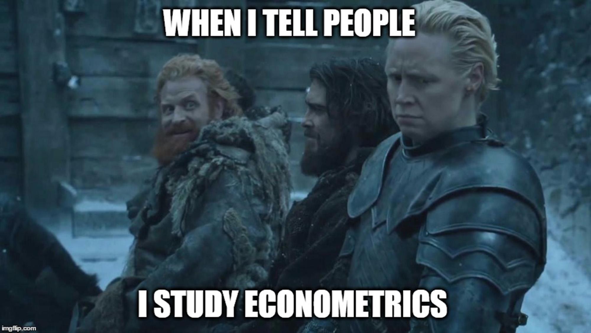 When I tell people I study econometrics