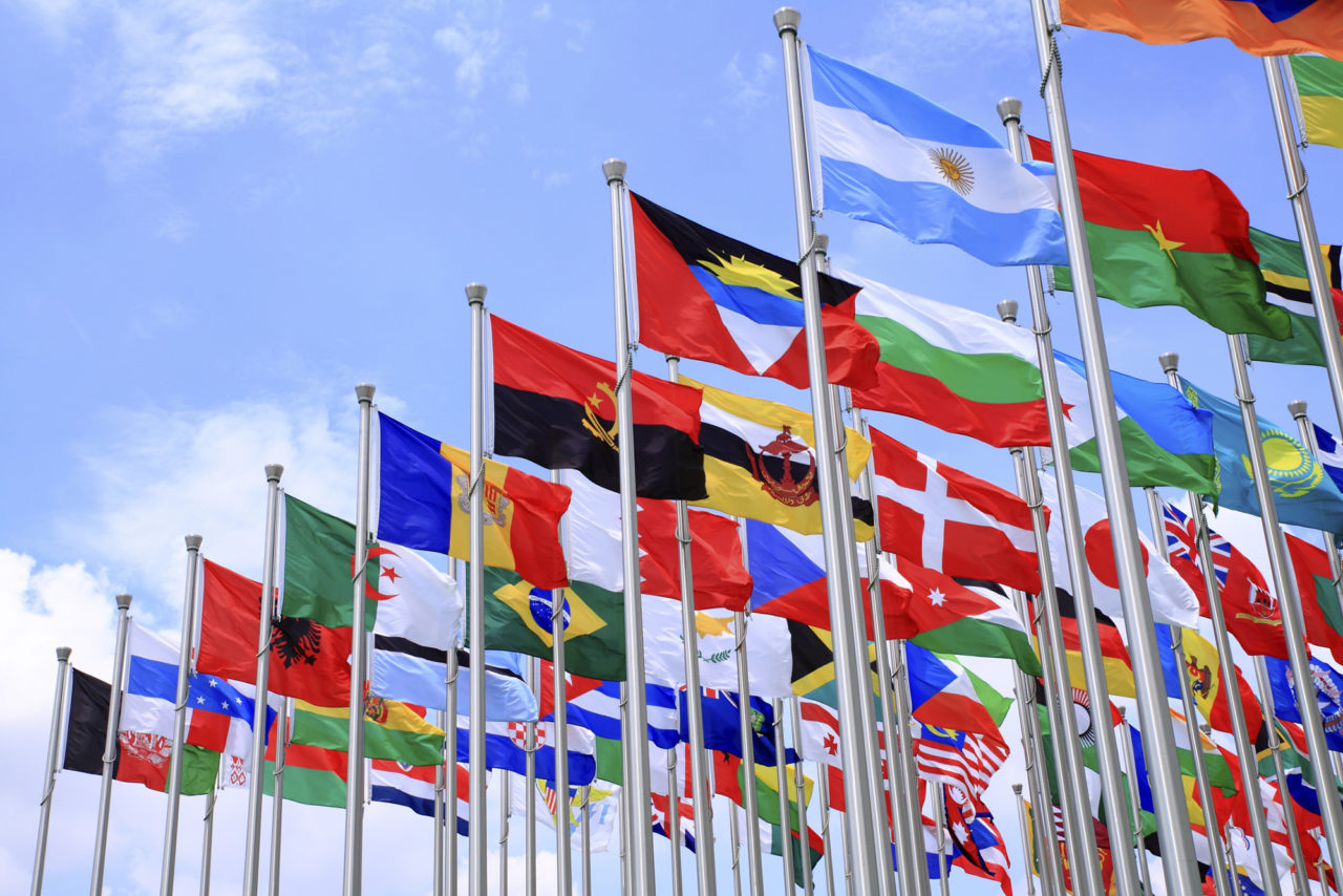 Flags for integration articler