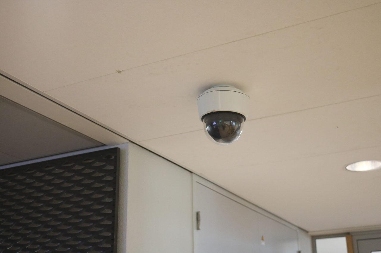 camera stalker mandeville bestuurskunde