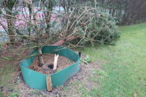 stormschade-campus-Woudestein-18-januari-foto-Elmer-17