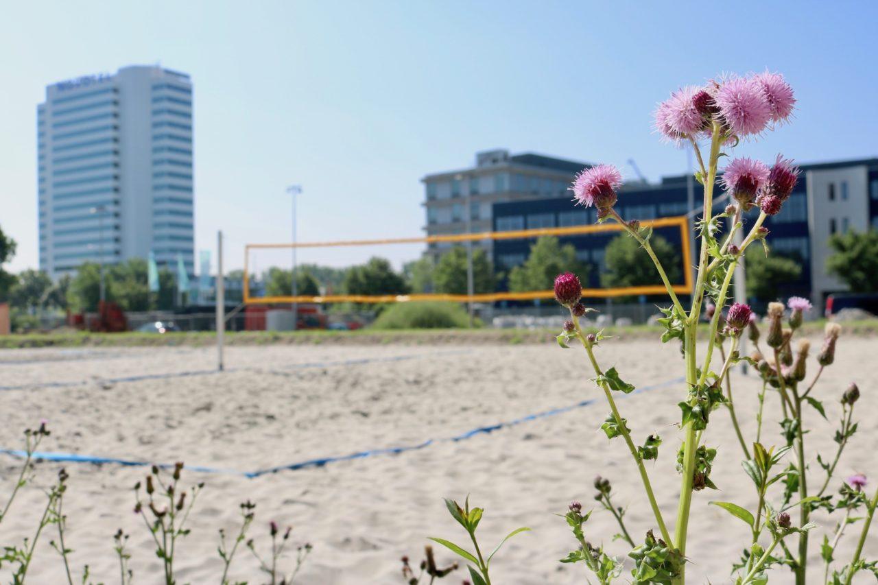 6juni2018_Erasmus_sport_gebouw_veld_3