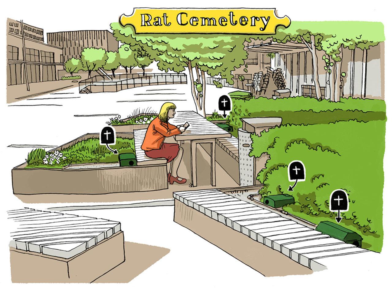 ikrotterdam-rat-cemetry