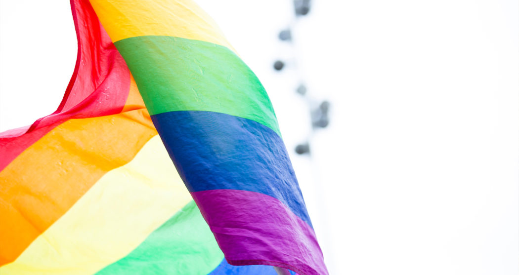 regenboogvlag pride