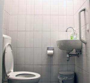 Hattagebouw toilet2