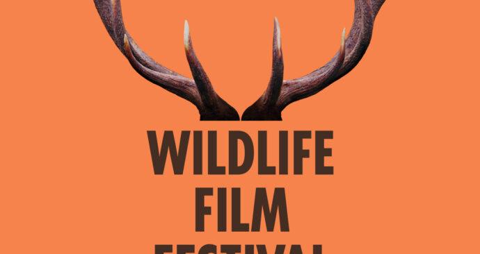 WFFR2019-logo-a6