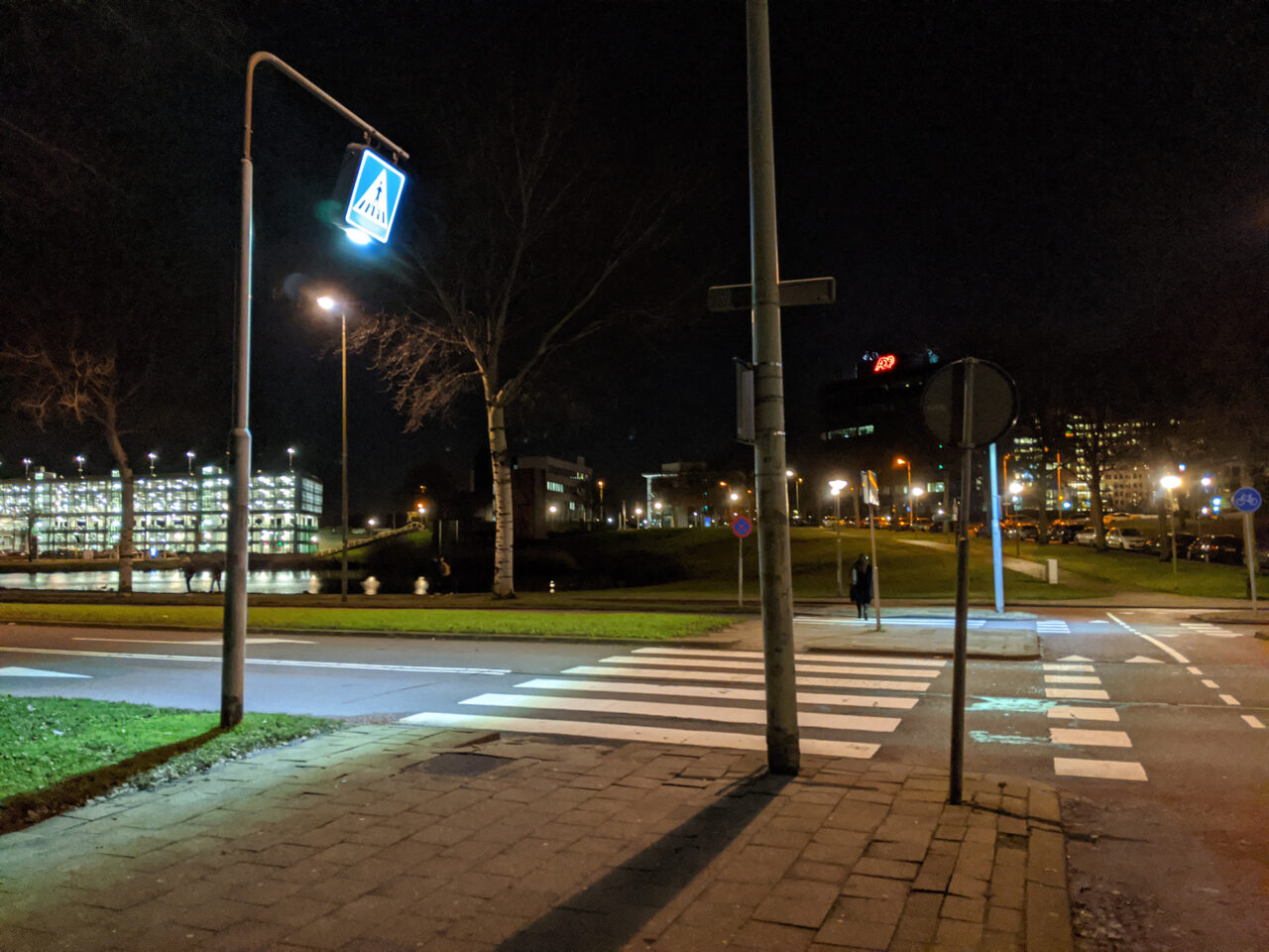 2020-01-22 Zebrapad Kralingse Zoom nacht