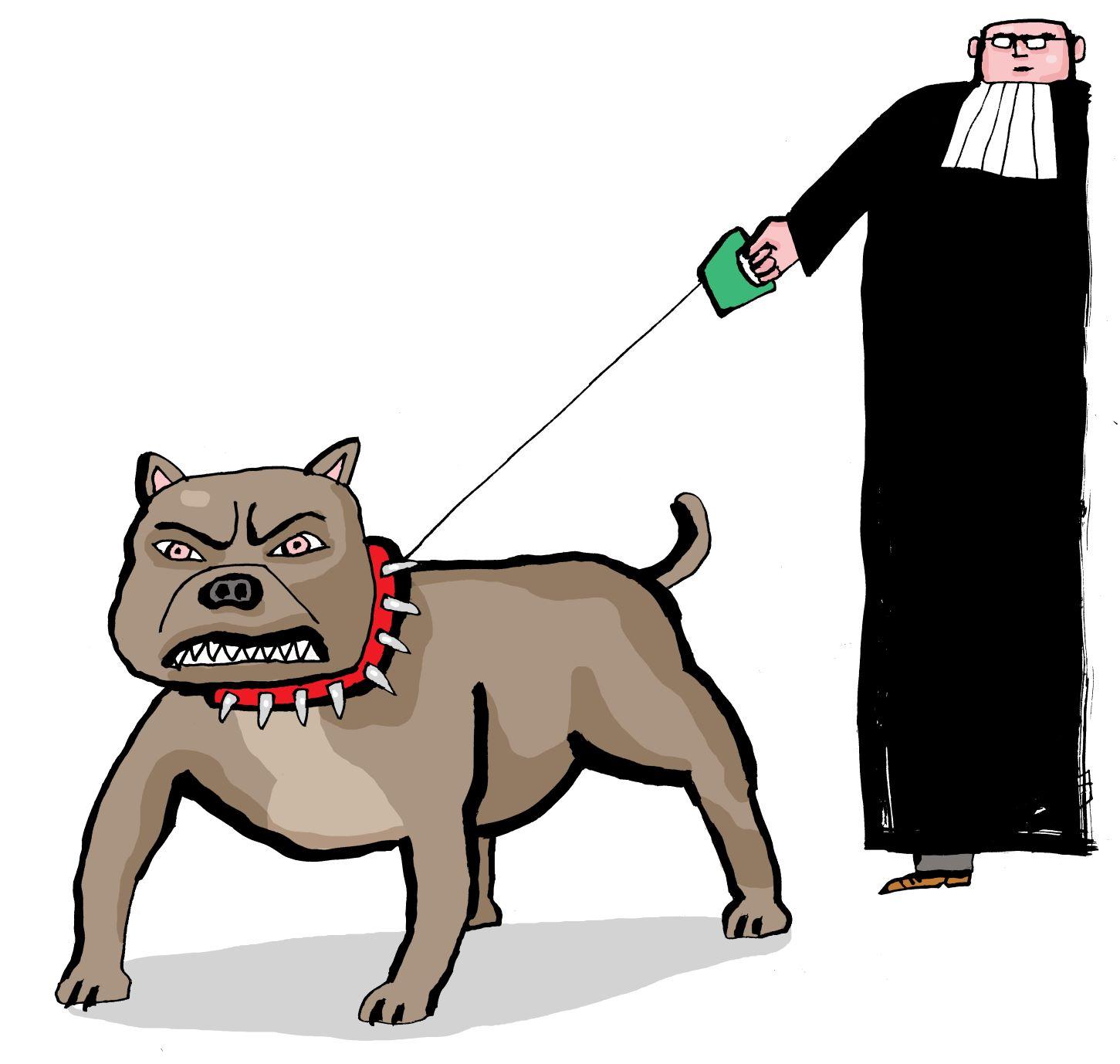 kwestie rechtsstaat pitbull – bas van der schot
