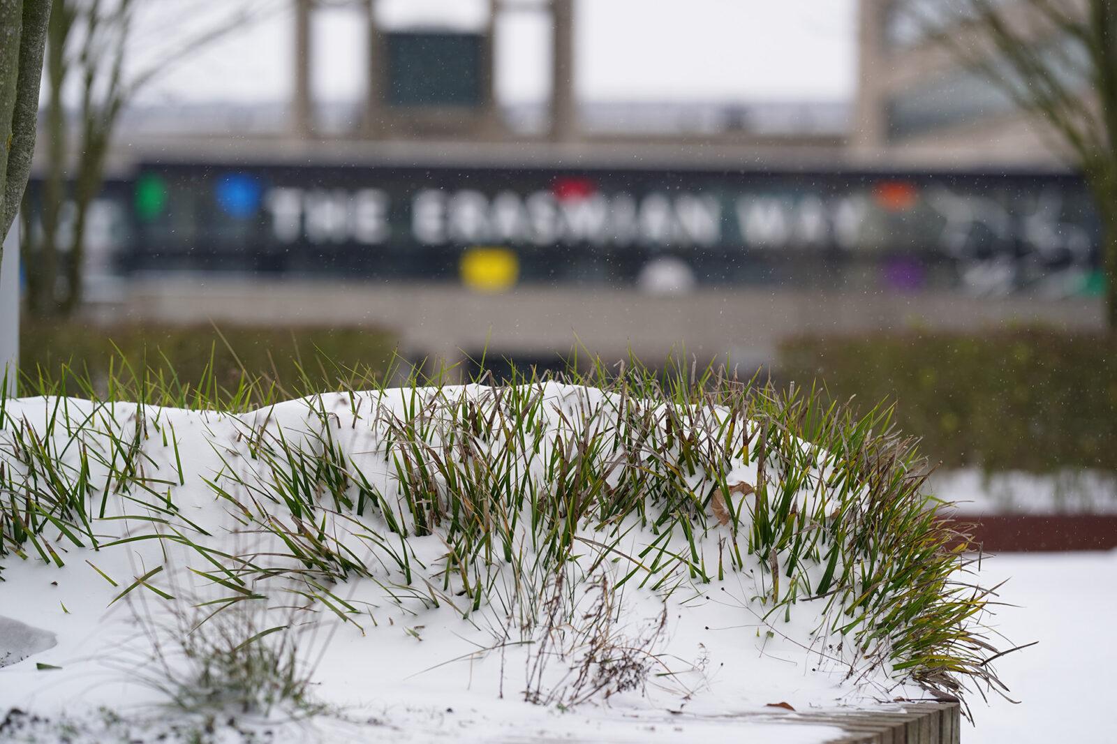 Campus in de sneeuw 08-02-2021 – erasmian way – Arie Kers