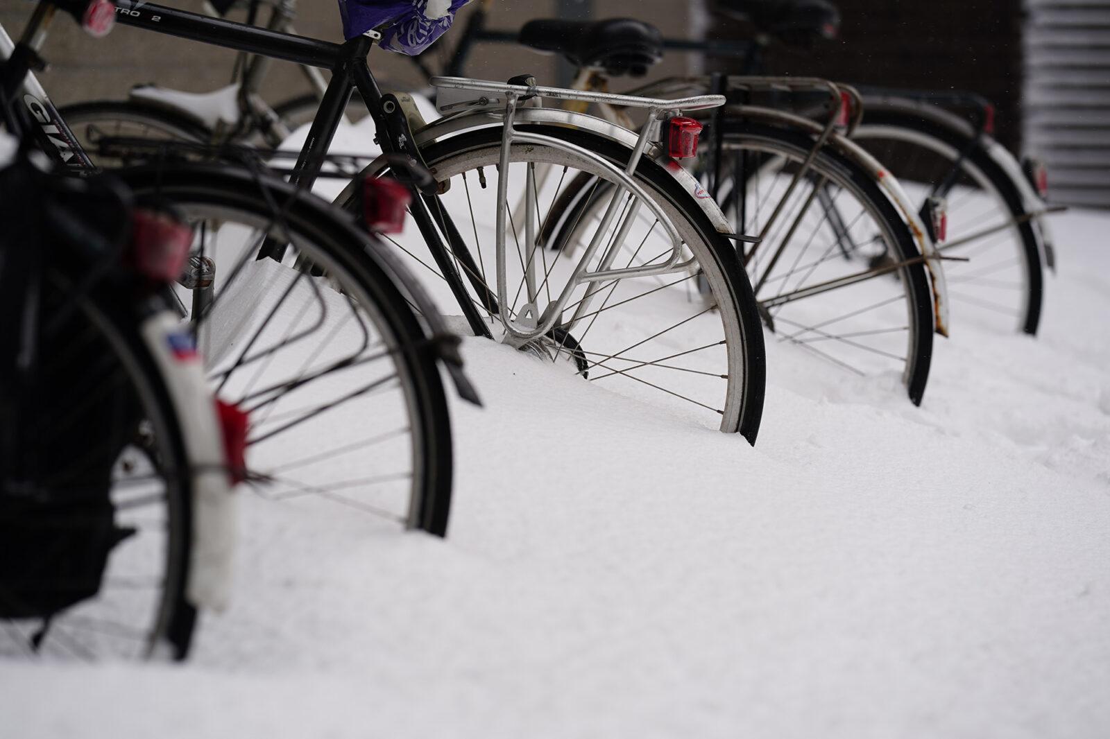 Campus in de sneeuw 08-02-2021 – fietsen – Arie Kers