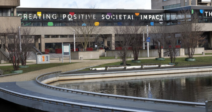 creating positive societal impact luchtbrug vijver kleurtjes – Levien Willemse