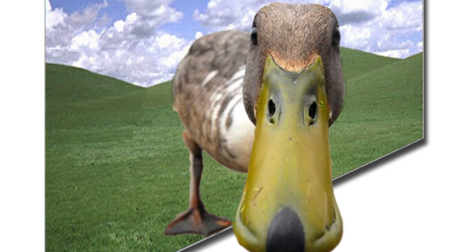 20210330 Cursus Photoshop -Duck
