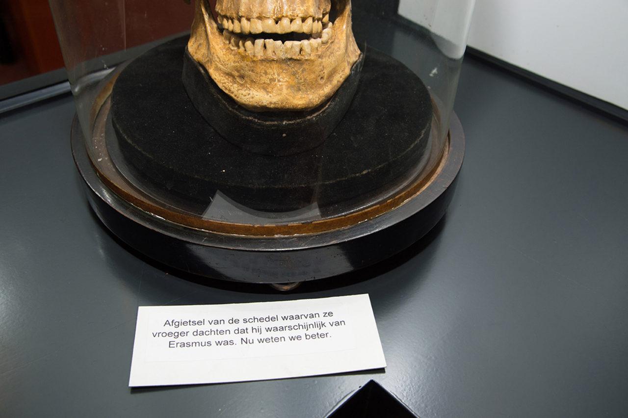 Vermeende schedel van Erasmus