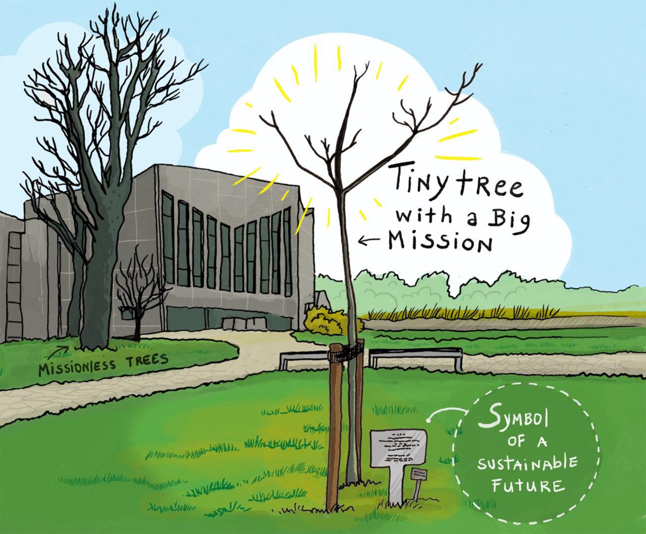 ikrotterdam-tiny-tree-with-a-big-mission