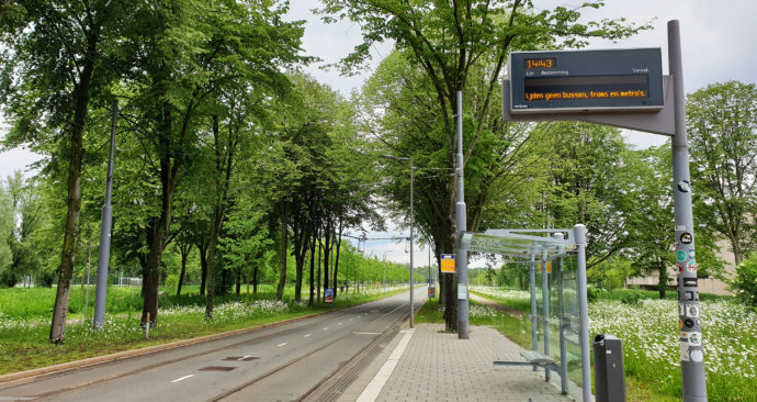 staking-tram