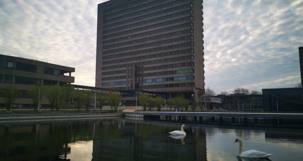 campus-ochtend-zwanen-tinbergengebouw